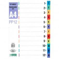 Διαχωριστικά Α4 Χρωματιστά Πλαστικά με Αριθμούς 1-12 D.RECT